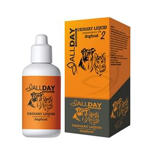 ALLDAY Urinary Liquid 100 ml